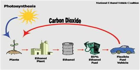 Carbon research paper